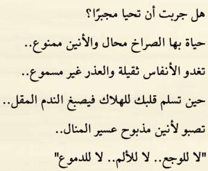 رواية لانك قدري - داليا سالم 4 Screen 1