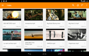 VLC for Android 3.3.0 RC 4 Screen 2