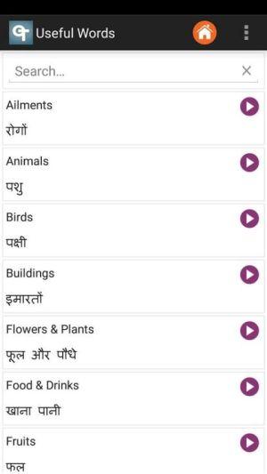 English Hindi Dictionary 4.0.2 Screen 6