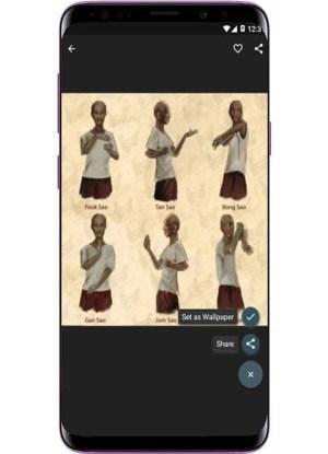 Wing Chun Training 1.5.0 Screen 6