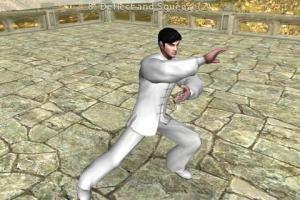 3D Tai Chi Chuan 42 Forms 1.0.9 Screen 3