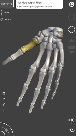 3D Anatomy for the Artist 1.2.7.1 Screen 6
