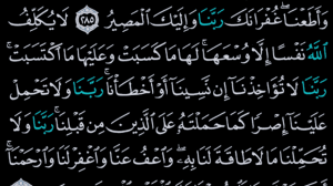 القرآن الكريم كامل بدون انترنت 8.2 Screen 6