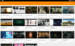 VLC for Android 3.1.3 Screen 1