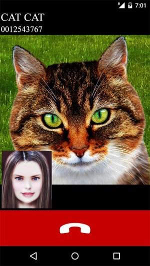 fake call video cat game 5.0 Screen 2