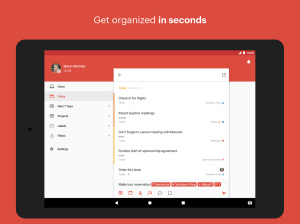 Todoist: To-Do List, Task List 12.9 Screen 6