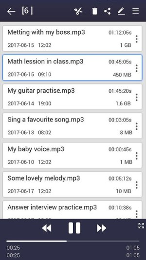 voice recorder pro 36 Screen 2