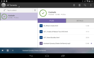 BitTorrent® Pro - Official Torrent Download App 6.2.0 Screen 2