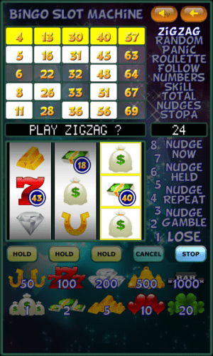 Bingo Slot Machine. 2.1.6 Screen 13