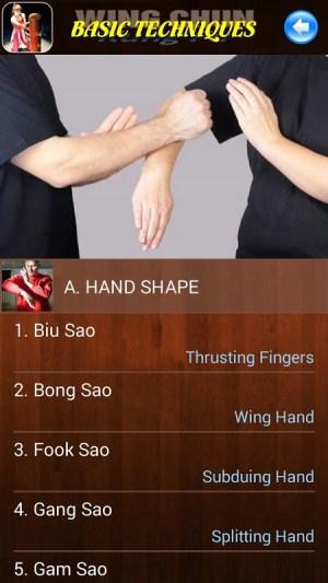 Android Wing Chun Kung Fu Screen 1