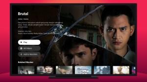 Vidio TV - Watch TV & Live Streaming 1.38.1 Screen 6