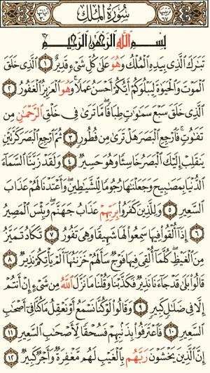 القرآن الكريم كامل بدون انترنت 8.2 Screen 1