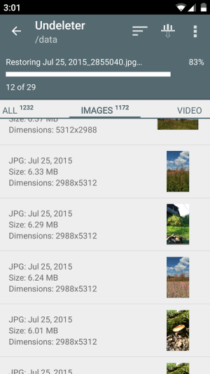 Undeleter 4.0.3.12.B160 Screen 5
