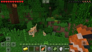 Minecraft: Pocket Edition 1.10.0.4 Screen 3