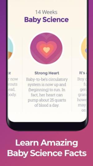 Pregnancy Tracker 4.12 Screen 1