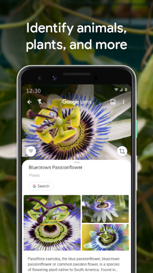 Android Google Lens Screen 1