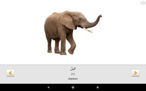 Learn Arabic words with Smart-Teacher 1.2.6c Screen 11