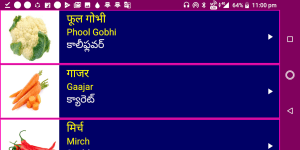 Learn Hindi from Telugu 19 Screen 14