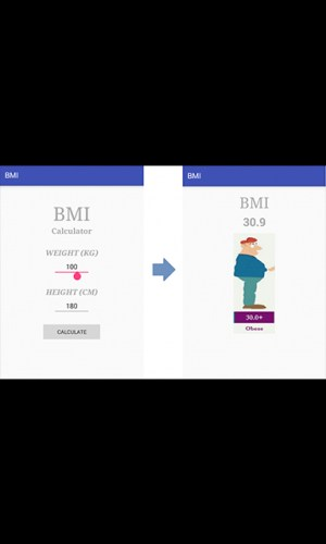 BMI Calculator 2019 2.0.14 Screen 2