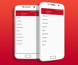 Android Spanish Dictionary Screen 4