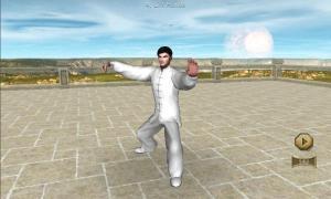 3D Tai Chi Chuan 42 Forms 1.1.3 Screen 3