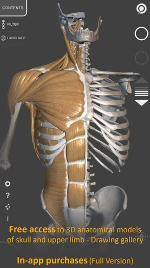 3D Anatomy for the Artist 1.2.7.1 Screen 10