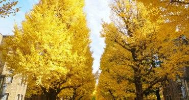 [東京銀杏推薦]東京大學銀杏拍照散步地圖-本鄉校區彌生校區一網打盡!
