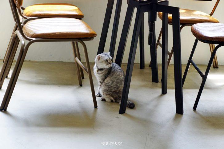 20180922222221 26 - [信義區美食 和日方常holy cube ]方形漢堡  藍色老宅裡美好食光  還有萌翻了貓咪陪你用餐