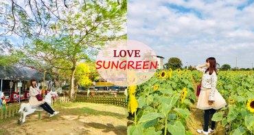 [桃園景點 向陽農場] 找回初心的童趣樂園  豆奶蓮子布丁 盛大向日葵花海 免費入園