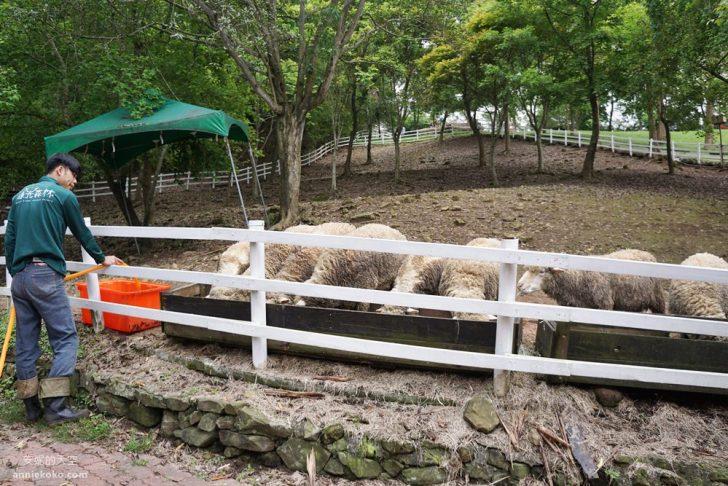 20190421171537 93 - 熱血採訪 [桃園旅遊]綠光森林綿羊牧場 一泊二食 親近羊群擁抱山林 被施了快樂魔法的森林牧場