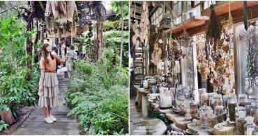[台南]千畦種籽舘 森林系博物館 走進種子的奇幻漂流世界