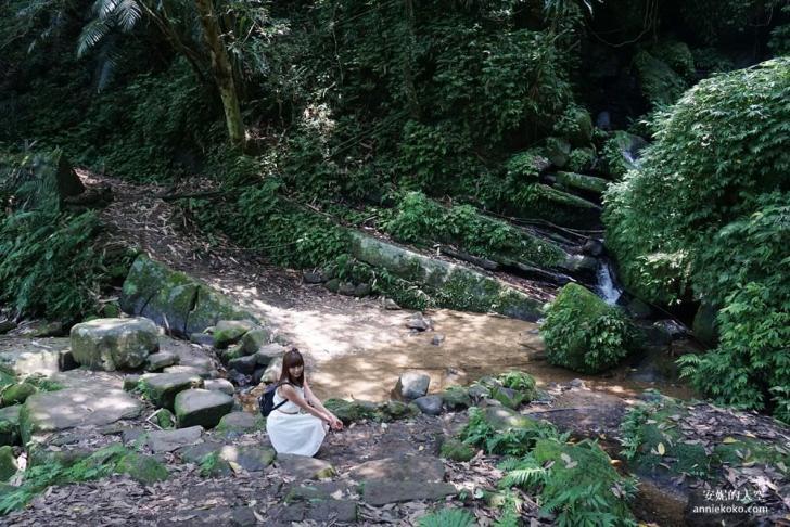20190530225400 68 - [新店景點 銀河洞越嶺步道 ]全台北最仙氣的步道 來一場與飛瀑共舞的山林之旅