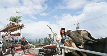 [宜蘭壯圍 牛頭司 - 耕牛小學堂] 搭牛車 牽牛犁田趣 用五感體驗農事  感受人與牛最緊密的情感