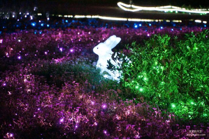 20200415141758 4 - [板橋蝴蝶公園 2020新北河濱蝶戀季]是精靈降落的夢幻境地吧 新北最美光雕地景藝術