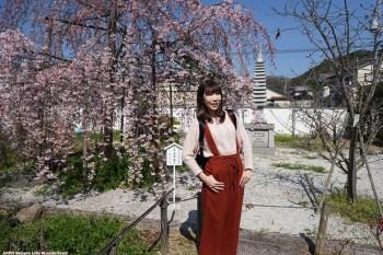 【京阪自由行】宇治景點 橋寺放生院 ♥ 宇治賞櫻私房景點