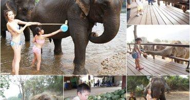 【泰國】北碧大象世界 ♥ 北碧府包車不可不去的北碧親子景點首選