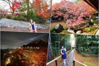 【京阪自由行】京都賞楓一日遊 ♥ 京都楓葉 經典行程推薦