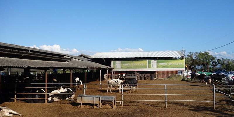 禾家牧場;到牧場吃霜淇淋!餵牛牛吃草,假日遛孩子好去處。(彰化旅遊/花壇牧場/彰化景點)