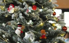 Sapin Castorama Noel 2020 Avec 15 Offerts