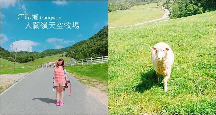 韓國江原道 ▌平昌景點推薦!大關嶺天空牧場 來去餵食可愛的羊咩咩吧 대관령 하늘목장