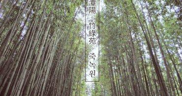 韓國 ▌全羅南道 潭陽竹綠苑죽녹원 綠意盎然竹林步道 光州出發最方便《妮妮專欄》