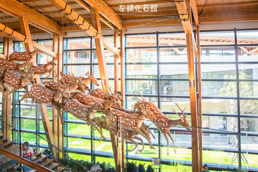 |台南景點|左鎮化石園區,全台第一座以化石為主題的博物館,一起穿越回到幾千萬年前的時空