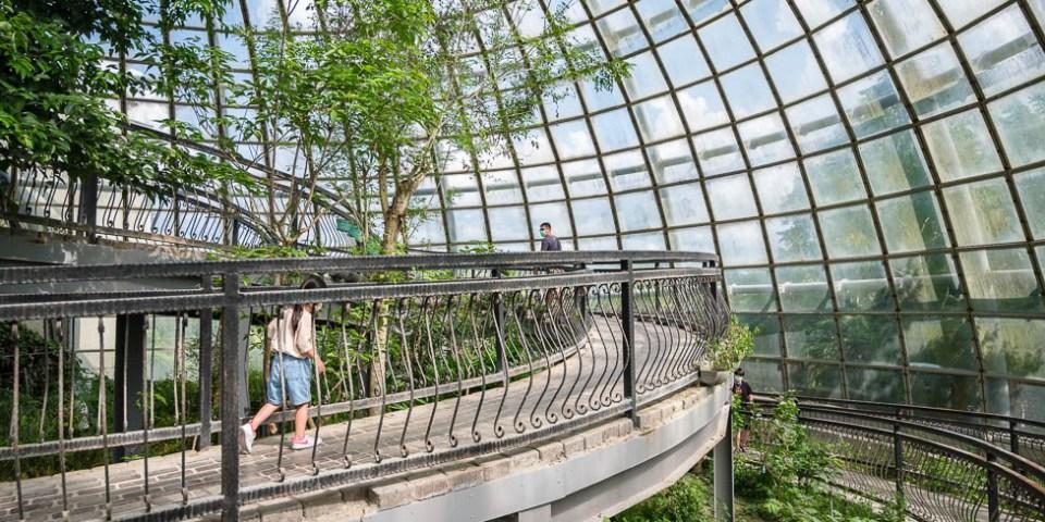 |嘉義景點|新嘉大昆蟲館,超好拍夢幻蝴蝶溫室花園和全台唯一旋轉彩蝶柱