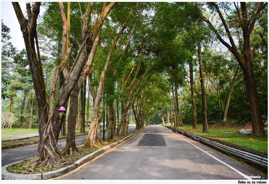 Pingtung|屏東‧三地門|親子玩樂、外拍、露營好所在*賽嘉樂園