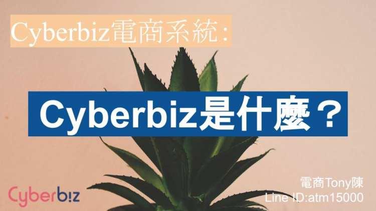 Cyberbiz電商系統介紹:Cyberbiz是什麼?