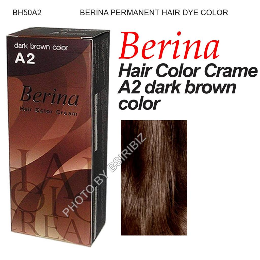 Berina Permanent Hair Color Dye Various Colour Black Amp Brown Amp Violet Shade