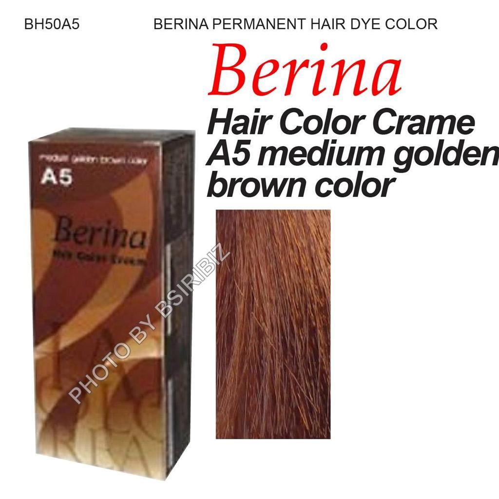 Berina Permanent Hair Dye Cream Color Punky Fashion Various Black Amp Brown Shade