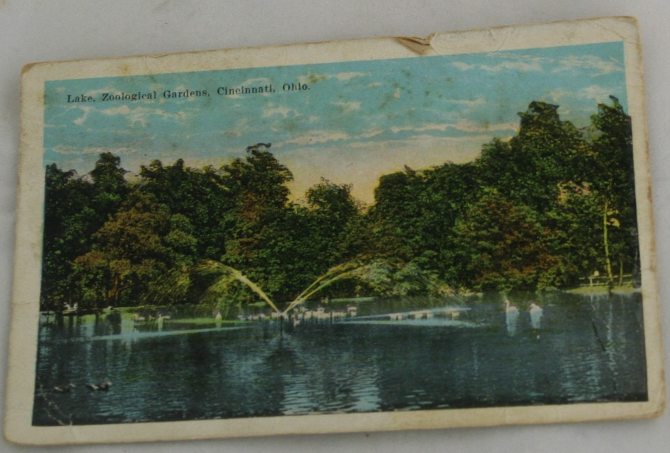 vintage postcard,hand colored,hand coloured,Ohio, Cincinnati, Zoological Gardens, Lake