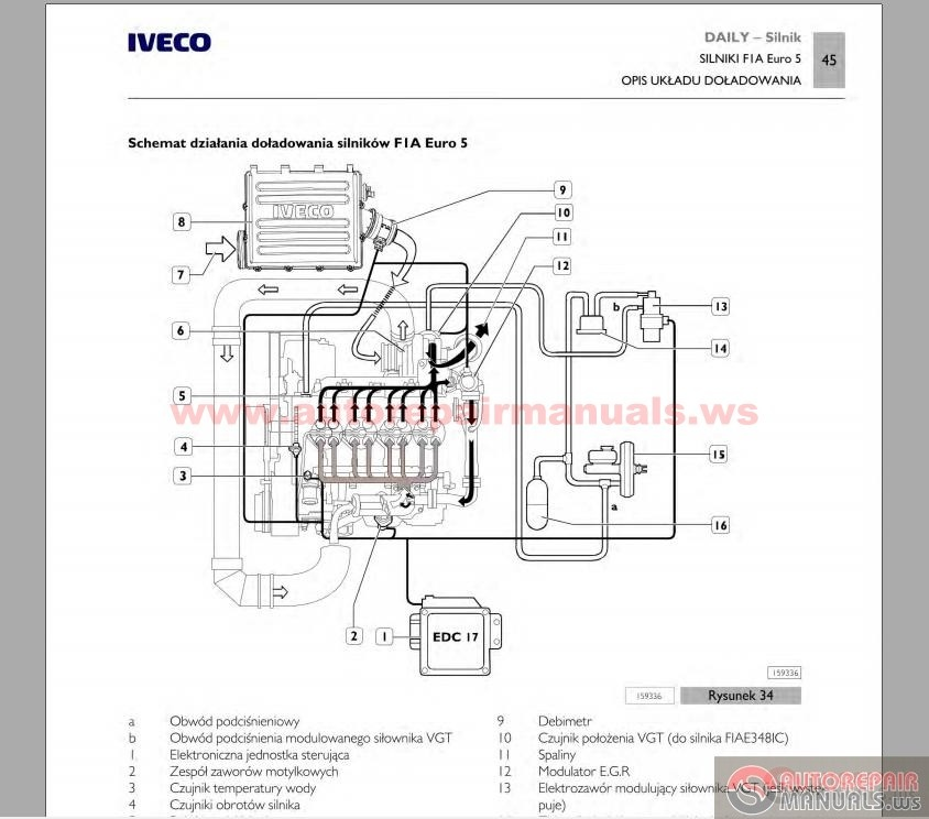 Iveco_Daily_MY2012_PL_Small2?resize=665%2C586 iveco daily wiring diagram english wiring diagram iveco daily wiring diagram english at reclaimingppi.co