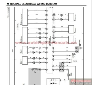 Toyota Land Cruiser 2004 Electrical Wiring Diagram
